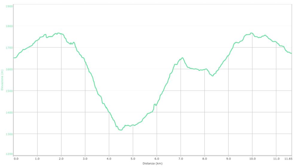 Profilo elevazione.png