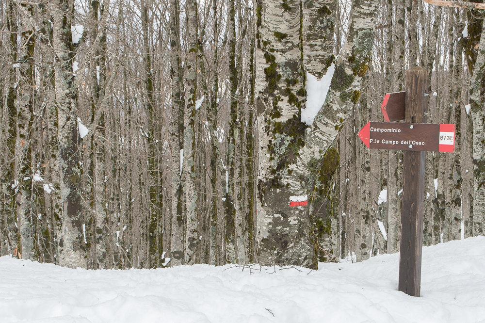 Invernale Monte Autore-16.jpg