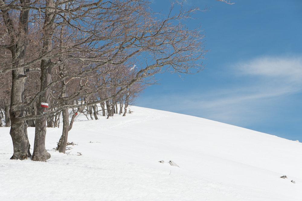 Invernale Monte Autore-7.jpg