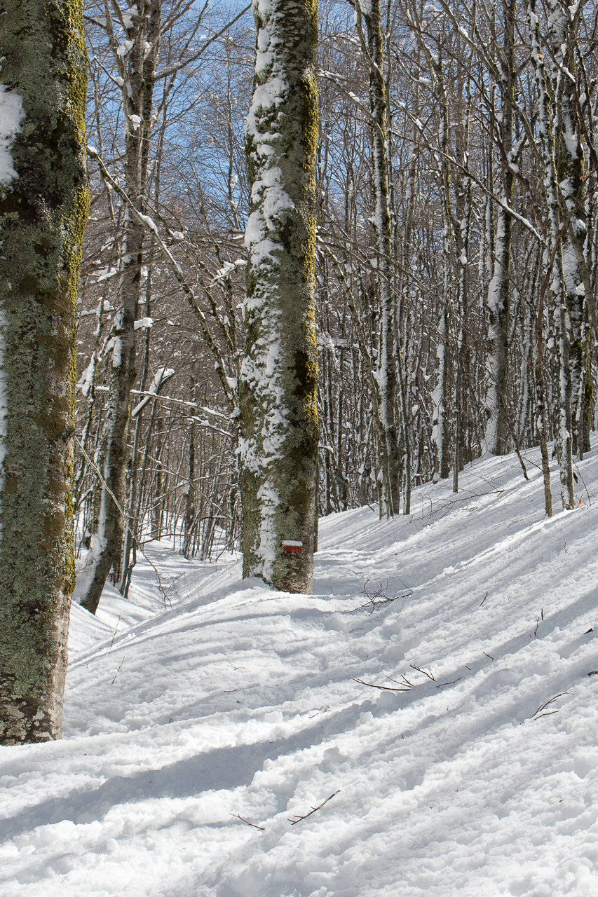 Invernale Monte Autore-2.jpg