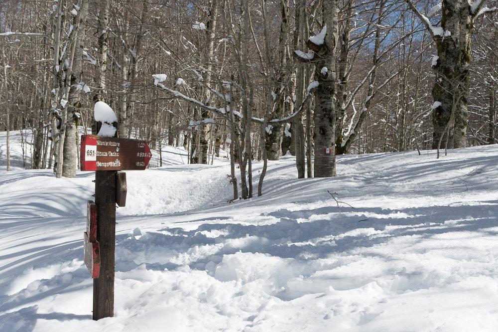 Invernale Monte Autore.jpg