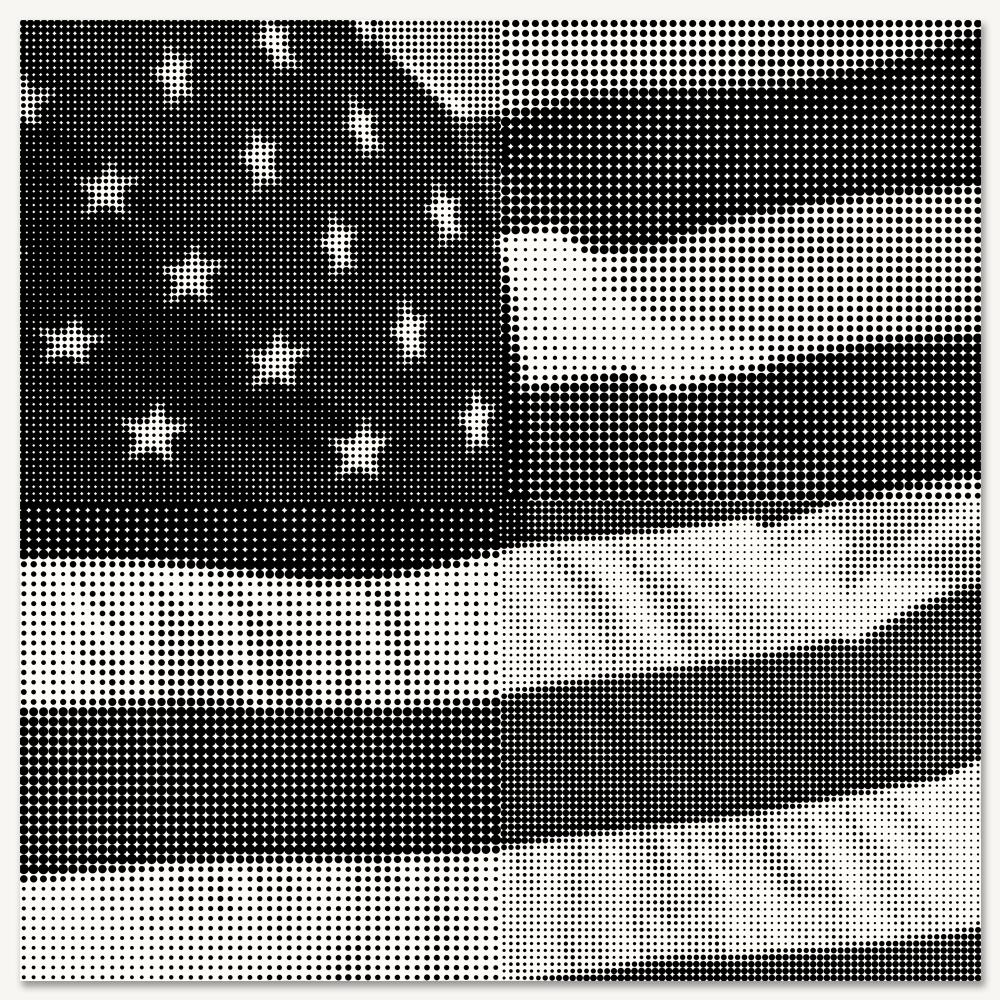 American Flag 2 - LARGE.jpg