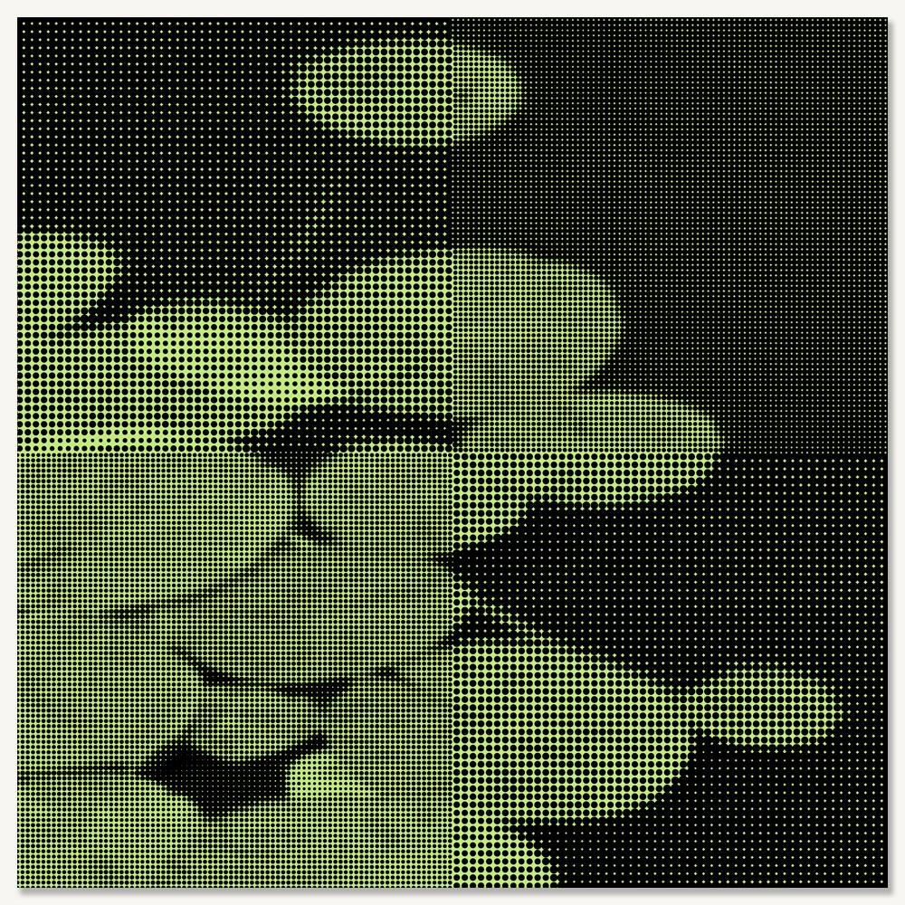WATER LILIES - LARGE.jpg