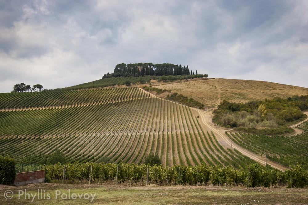 La Bella Toscana, #017