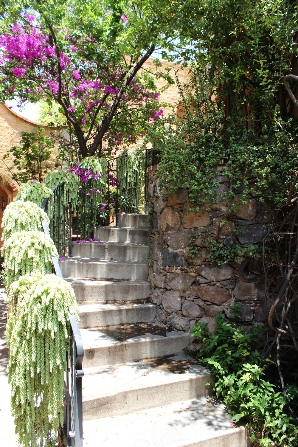 Charming curved entry leading to the Casita