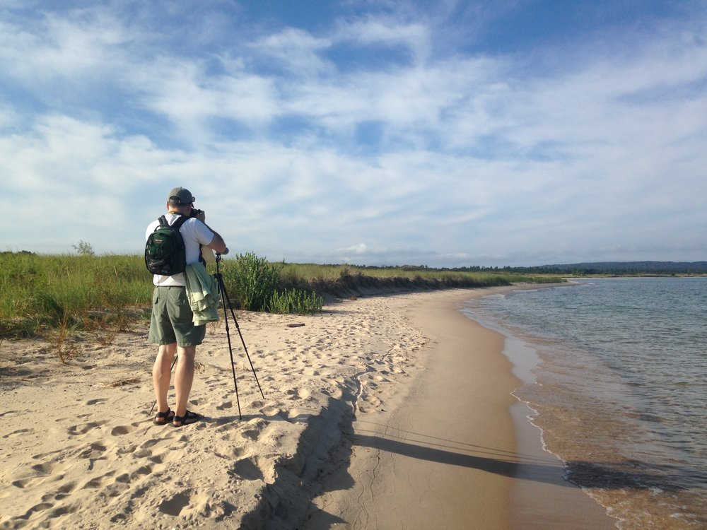 Piping Plover monitoring in Sleeping Bear Dunes National Lake shore with my dad!