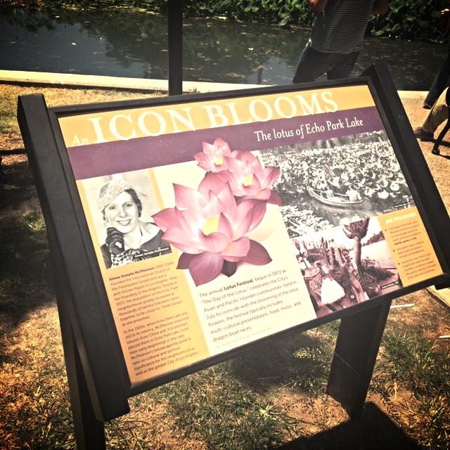 Lotus Festival--Echo Park