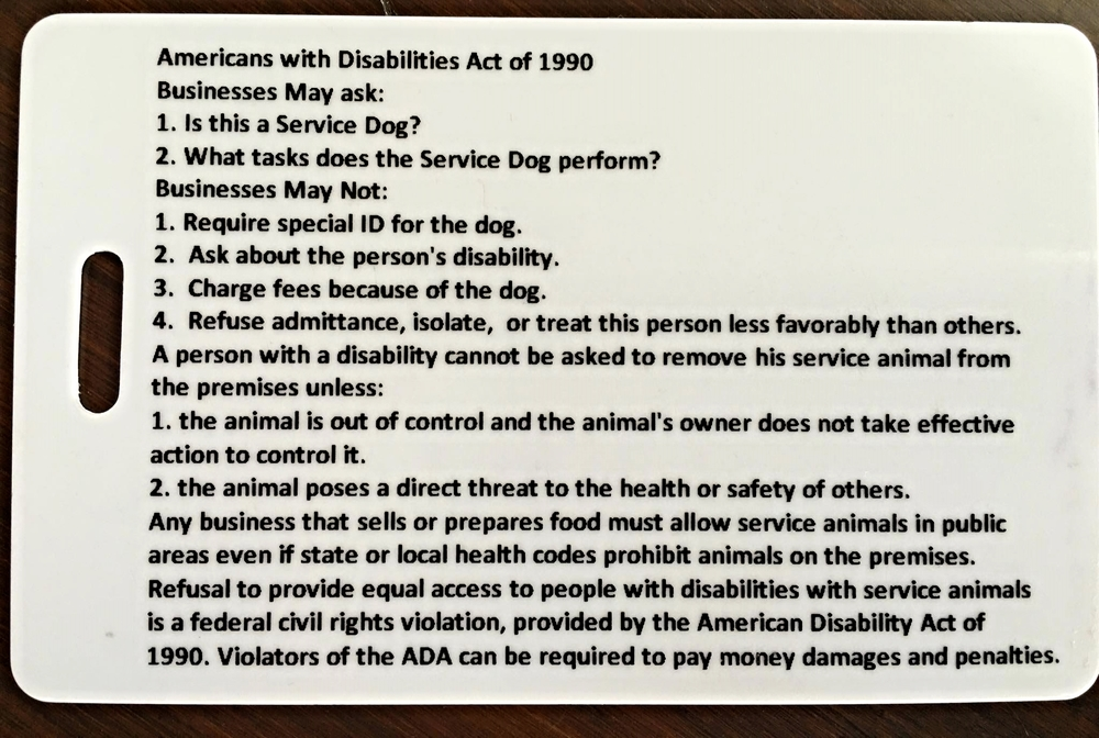 American Airlines Service Dog Form