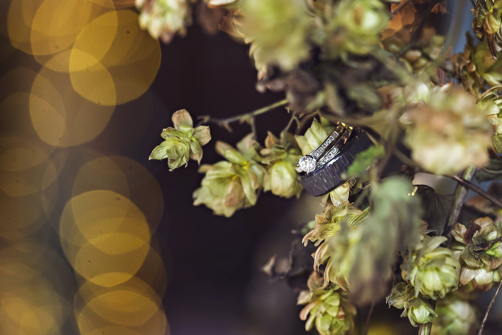 Pattison Wedding-001.jpg