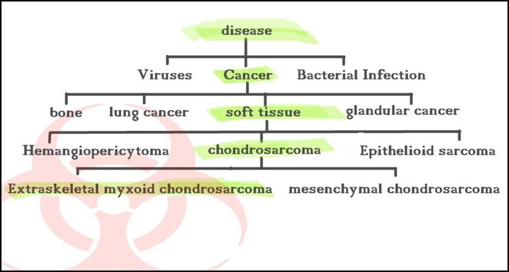 cancer cladogram
