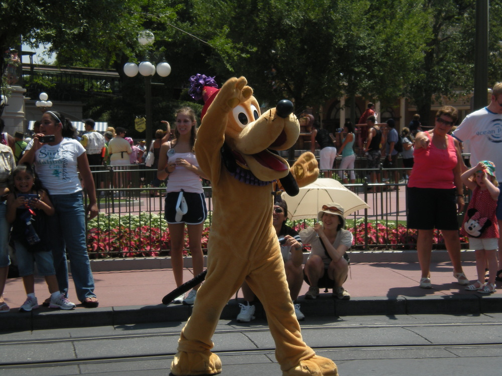 Dog -Pluto in Celebrate Today Parade at Magic Kingdom, WDW, Florida