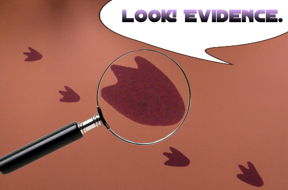 evidence footprints.jpg