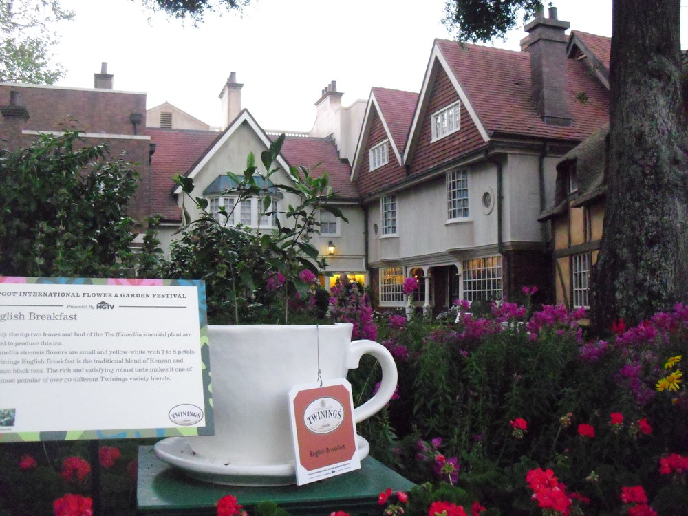 Twinings Tea garden in the UK pavillion in Epcot -Author's collection