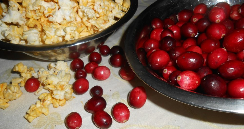 Cranberries, while traditional and perfectly safe, are not a super food. Still, they're pretty.