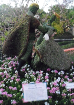 Sleeping Beauty topiary, Epcot