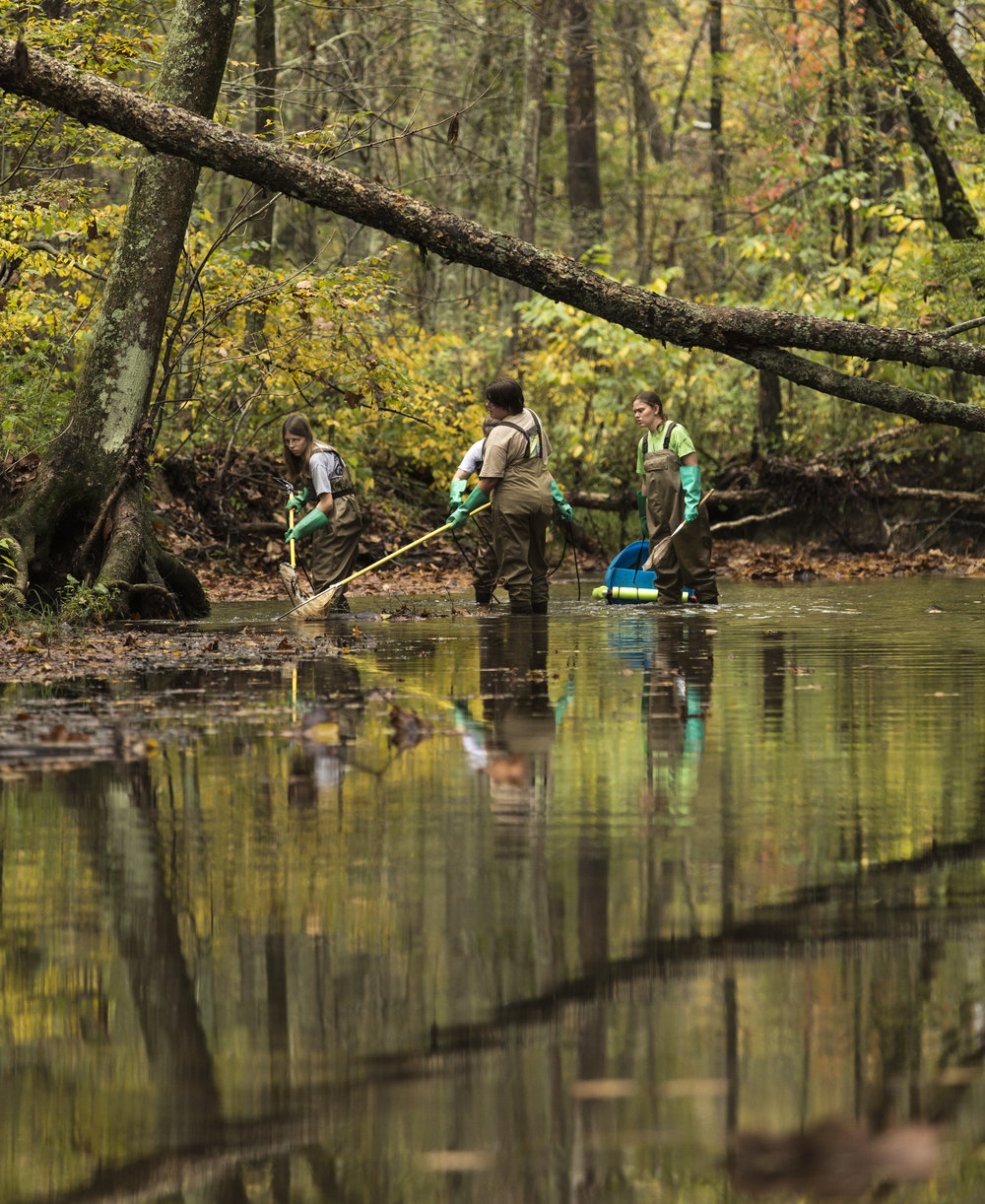 Amy Mackey, left to right, Brooke Stokes, Abby Costilow, and Emily Keil-Loudner perform a fish sampling in Sandy Run Creek in McArthur, Ohio, on October 9, 2017.