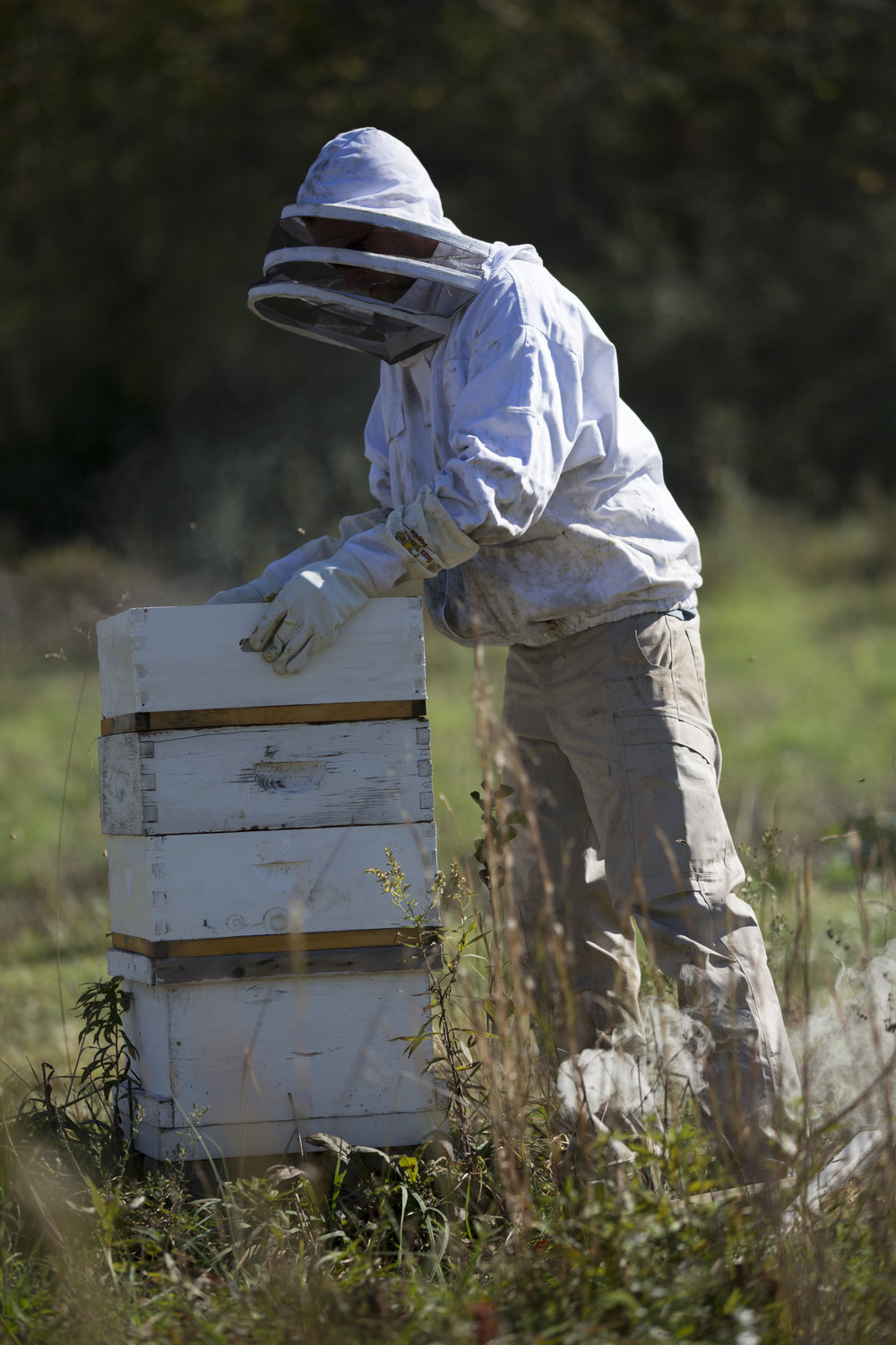 Homecoming Farms Owner John Wood checks on his bees before they rest for the winter in Amesville, Ohio, on October 20, 2017.