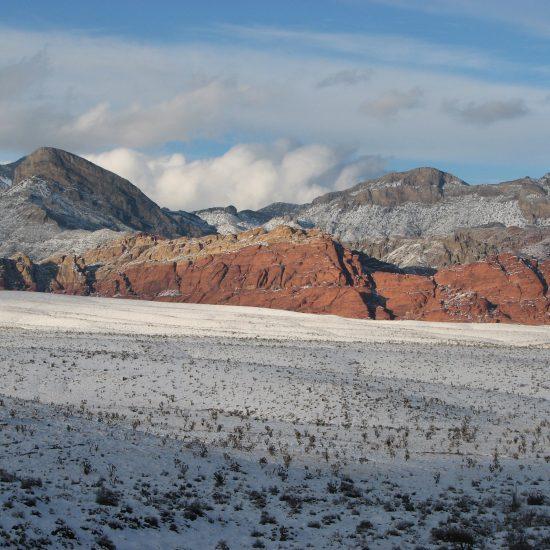 red rock conservation.jpg