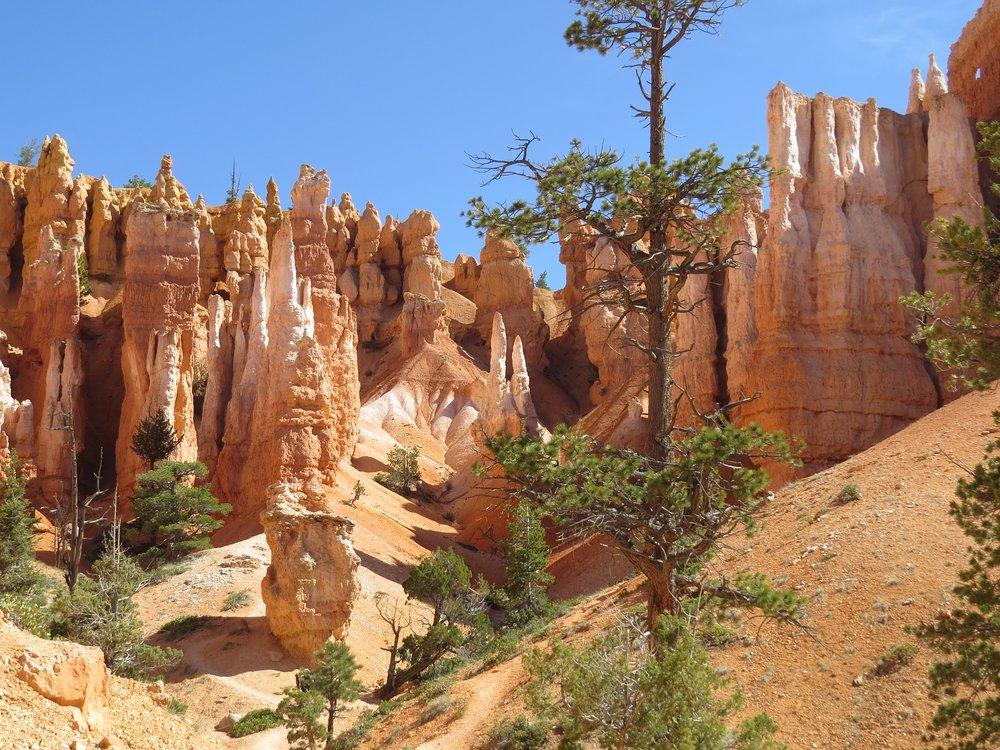 bryce-canyon-2372237_1920.jpg