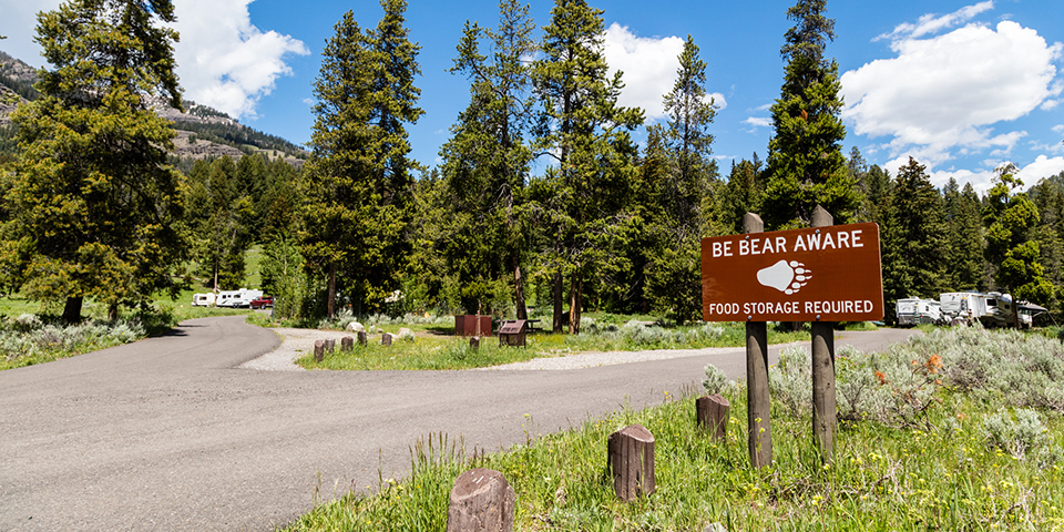 pebble_creek_campground.jpg