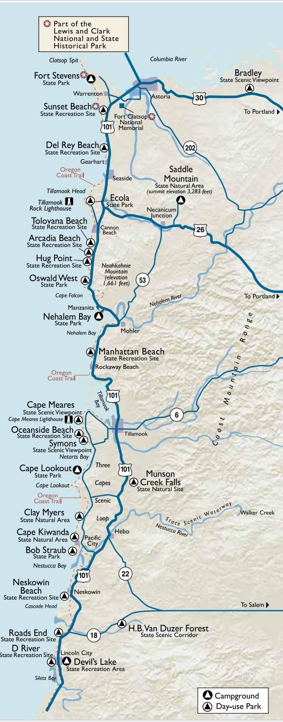 Oregon Coast Camping — Wandervans