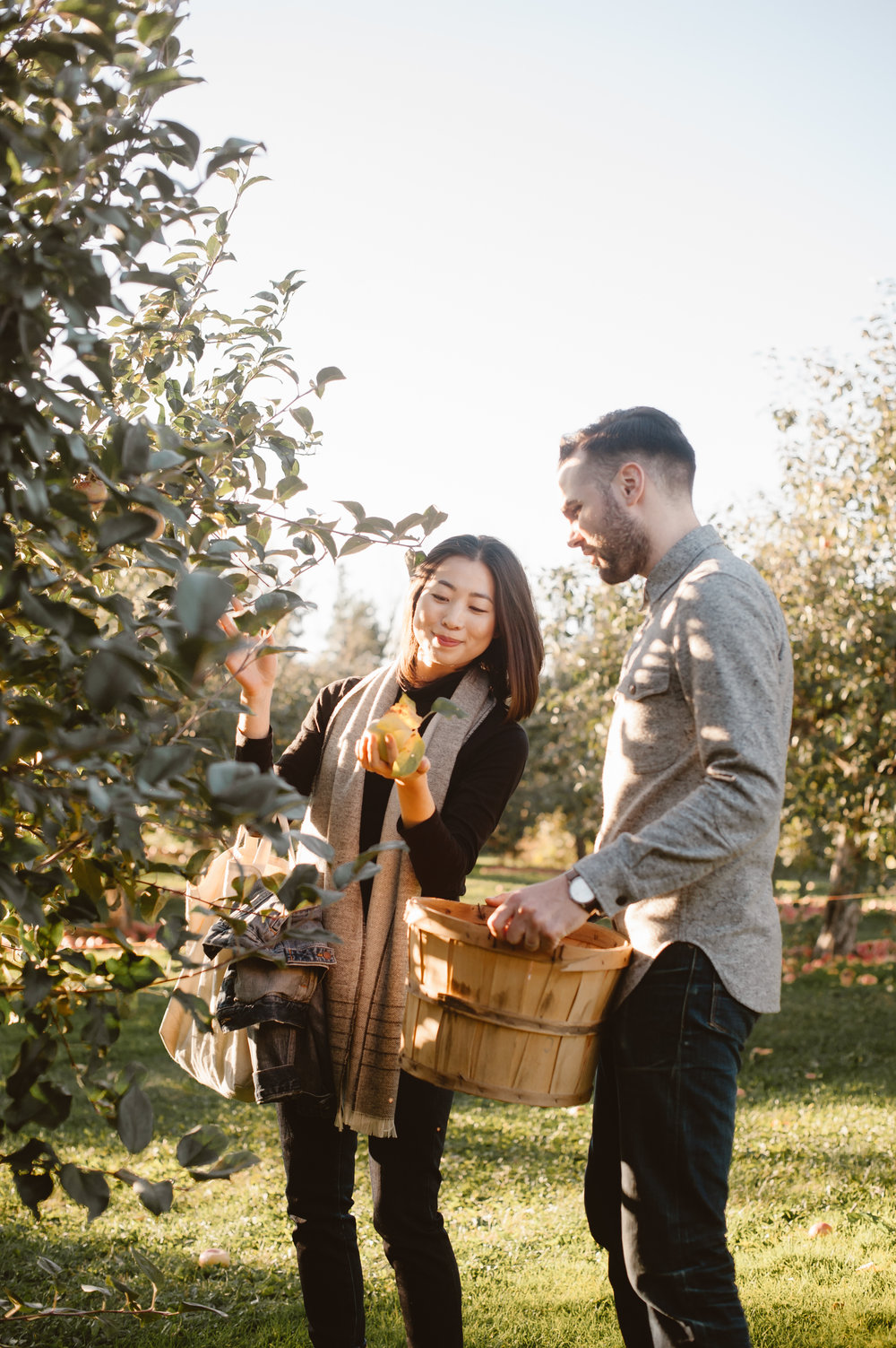 Midwest Apple Orchard3 (whenwewed.co)