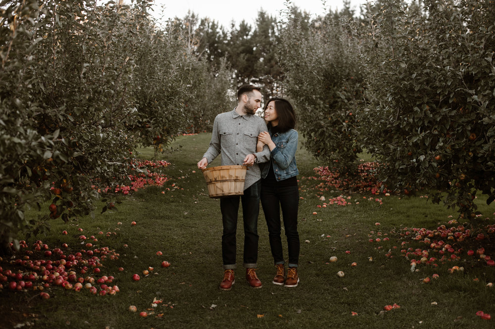 Midwest Apple Orchard14 (whenwewed.co)