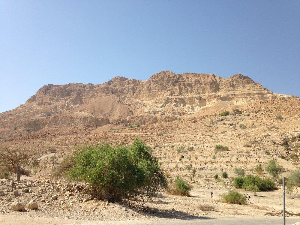 Dead Sea Panaroma
