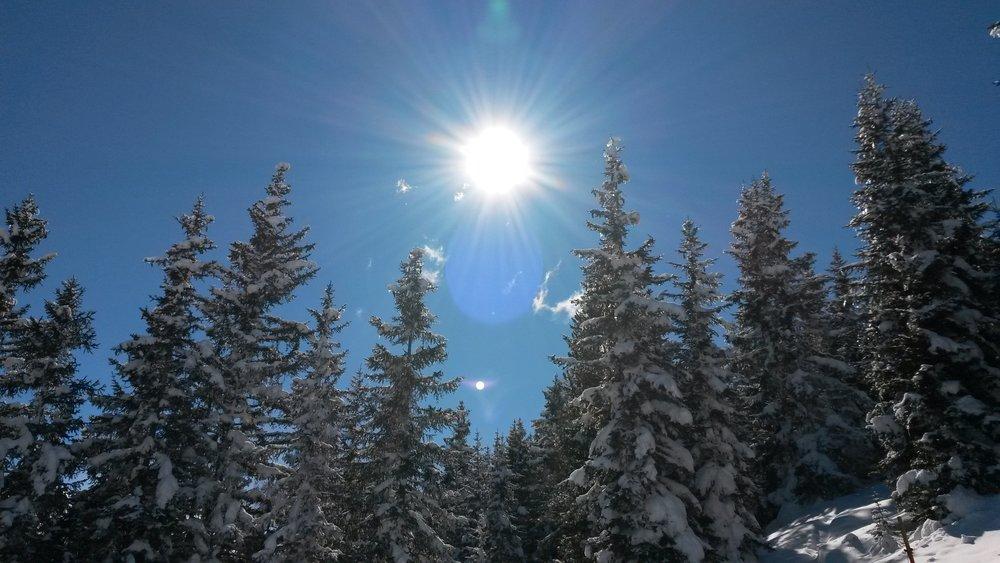 Wintersonne - ein traumhafter Tag