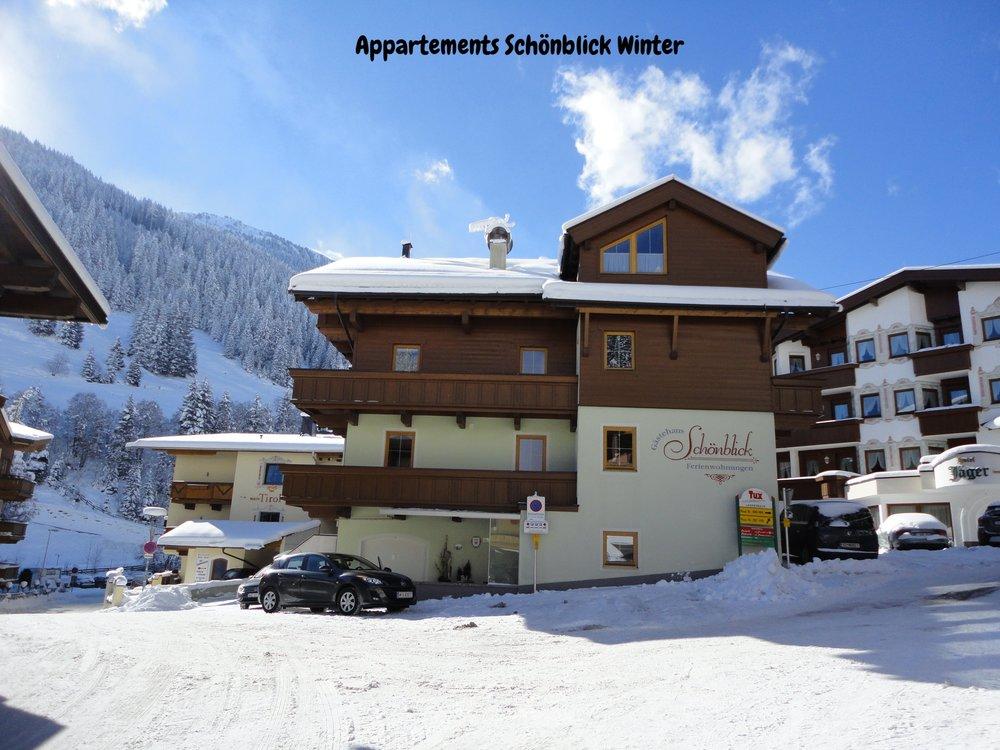 Appartements Schönblick Winter