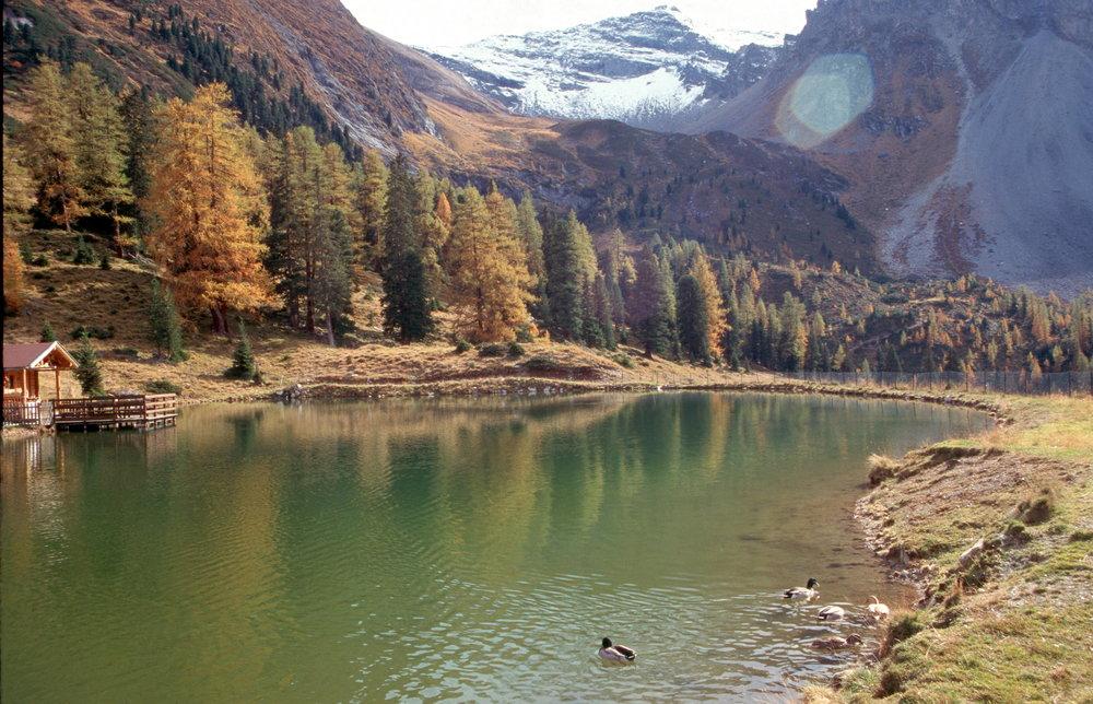 Grieralmsee im Herbstgewand