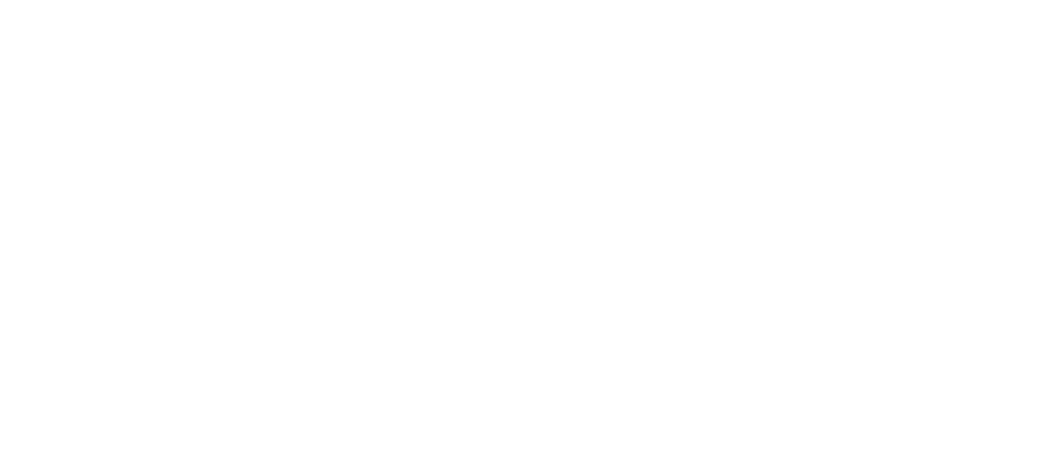 Best Teachers Institute