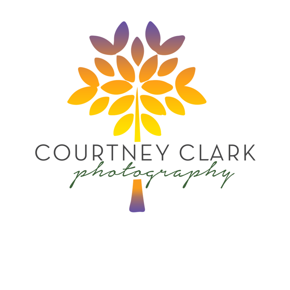 Courtney Clark Photography