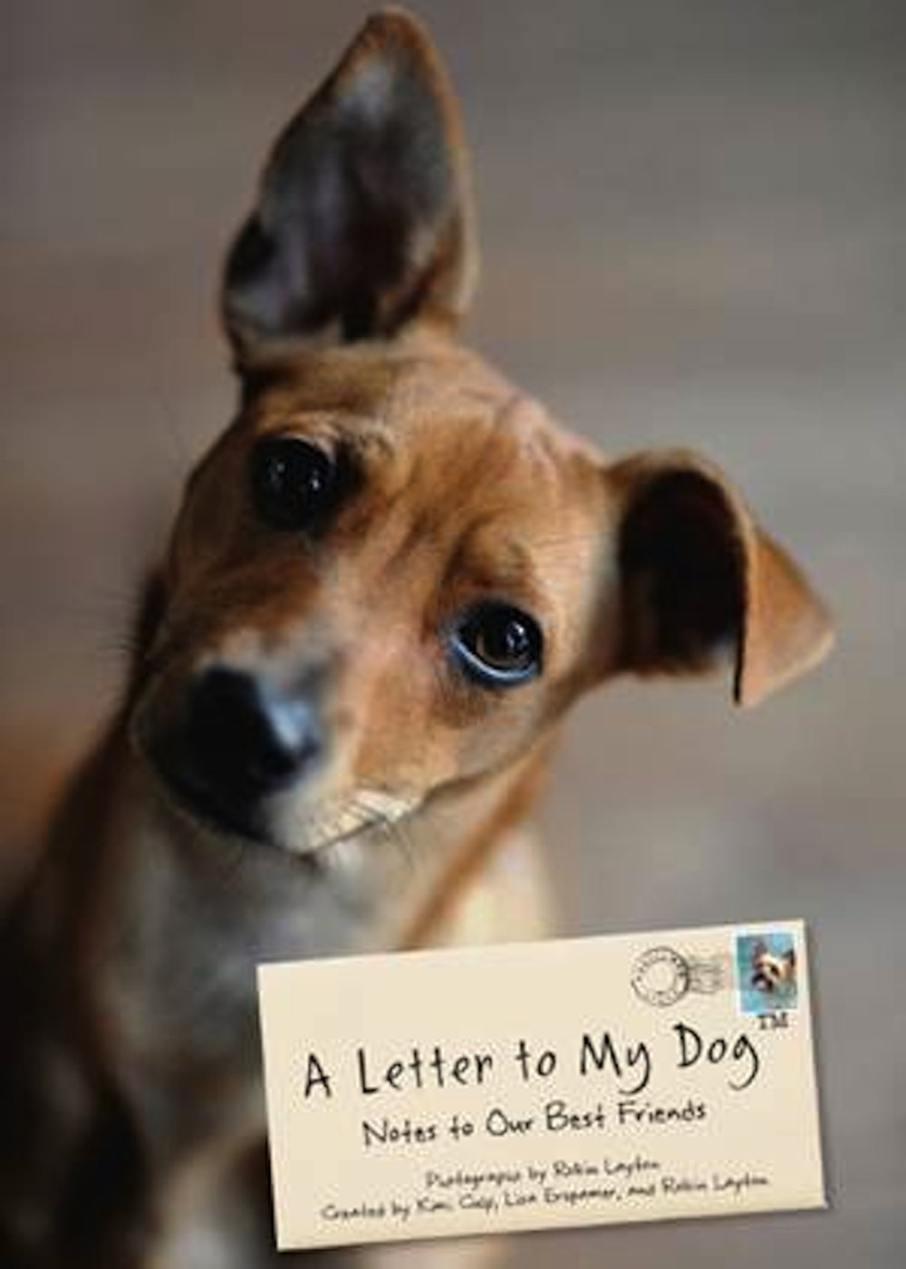 Letter-To-My-Dog