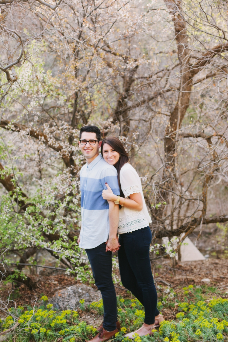 green_apple_025_spring_engagements