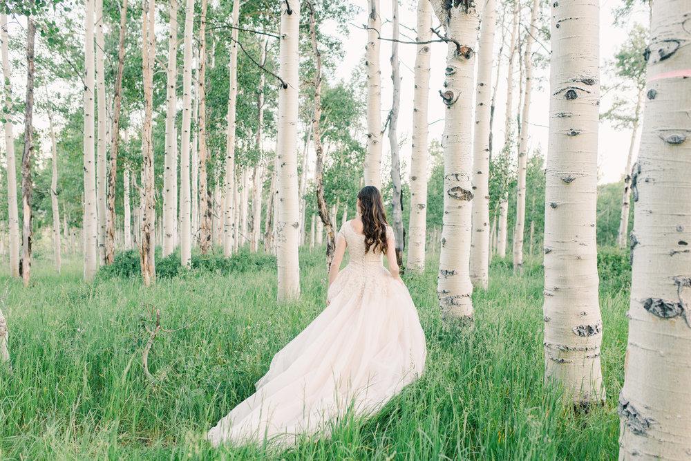 mountain-bridals_lindseystewartphotography_0067.jpg