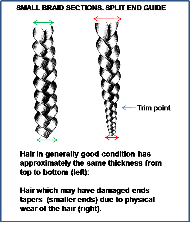 hairtrimguide