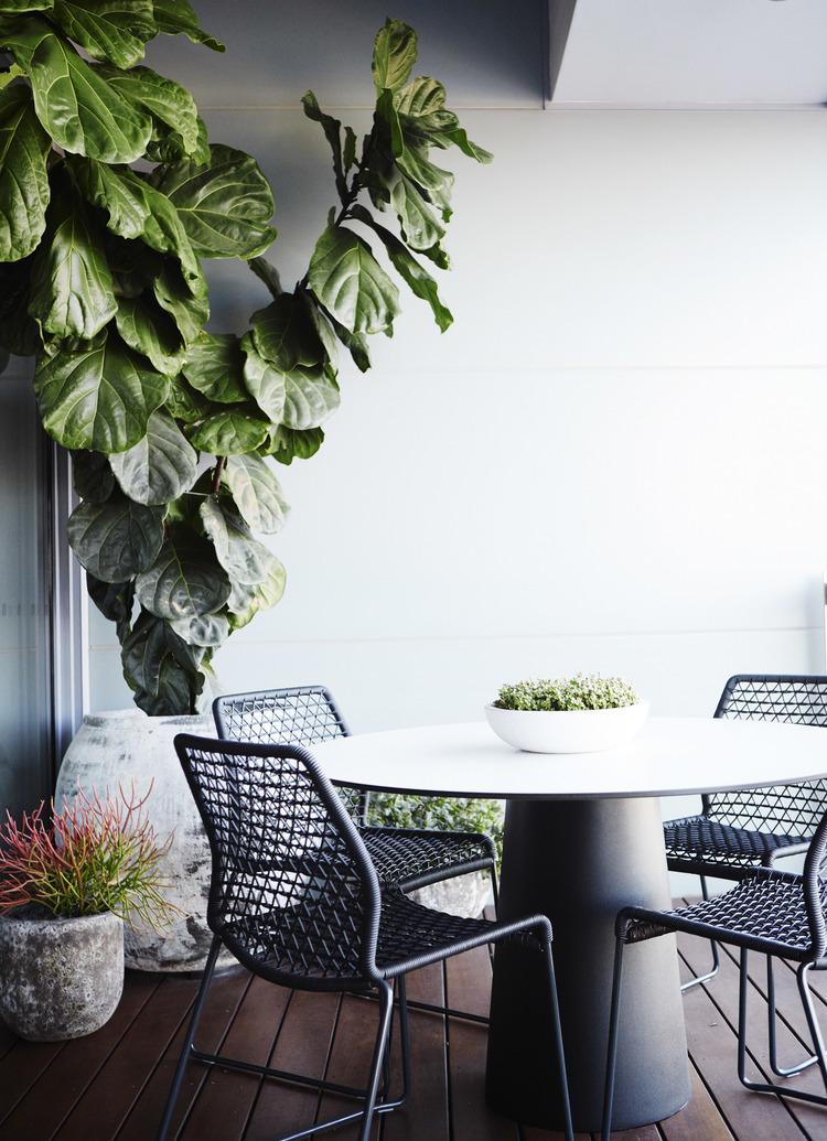 Eastern Suburbs - Pyrmont - Balcony Garden Design