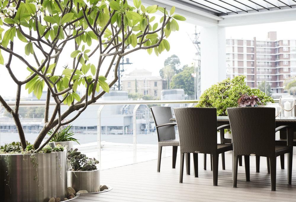 Plants, Balcony, Sydney Garden Design