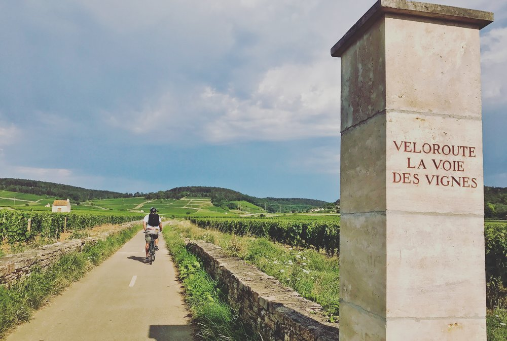 Heading off on the Voie des Vignes