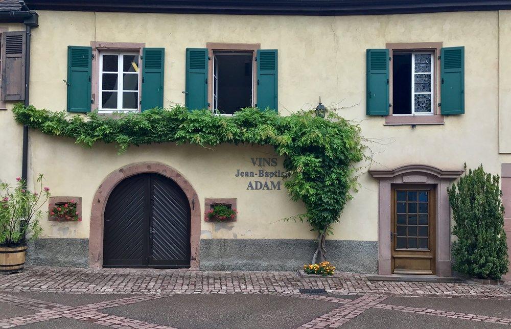 Cellar Room at Vins Jean-Baptiste Adam