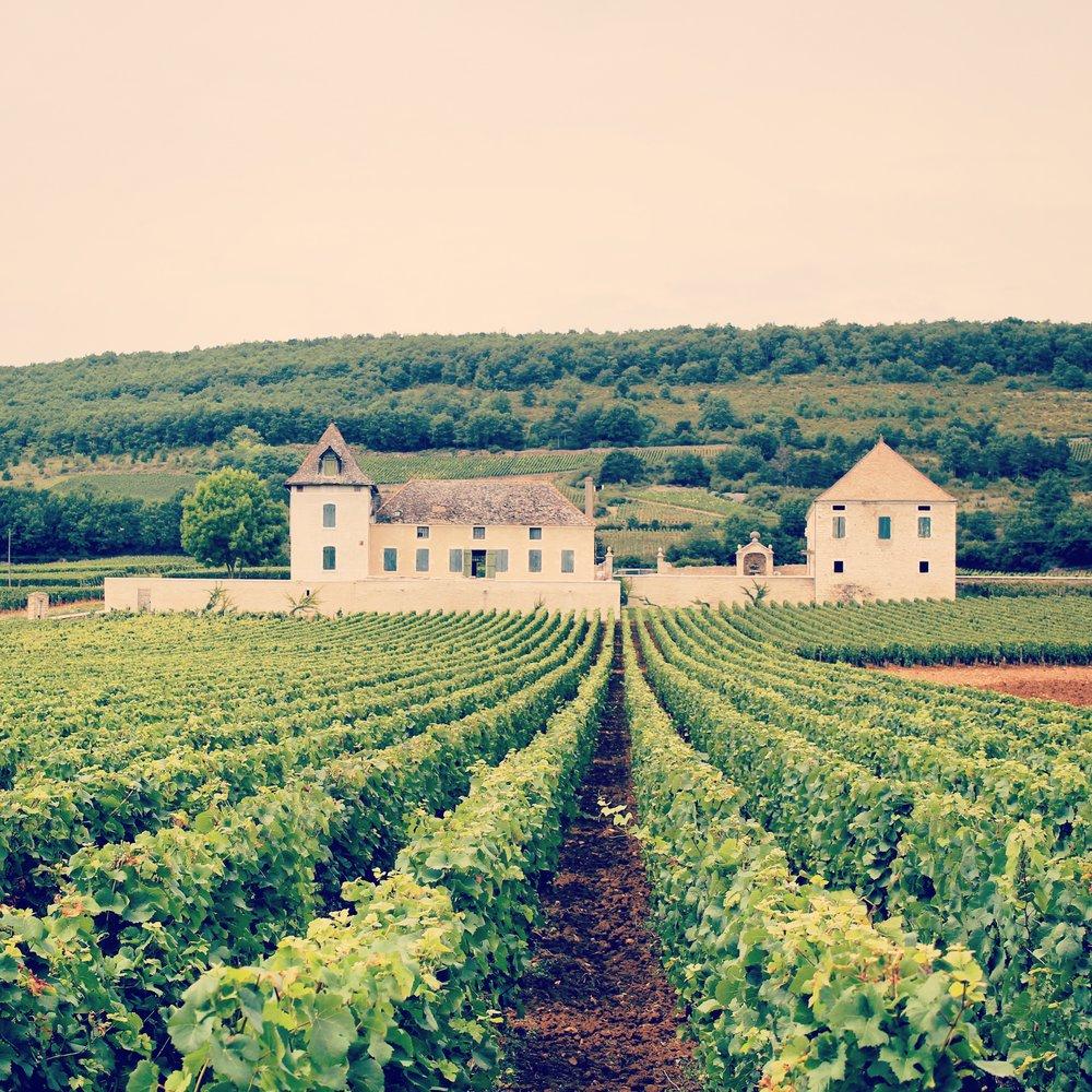 1. La Voie Des Vignes - Beaune to Santenay Bike Route -