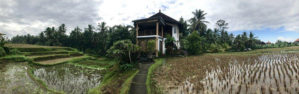 3. Ubud Yoga House -