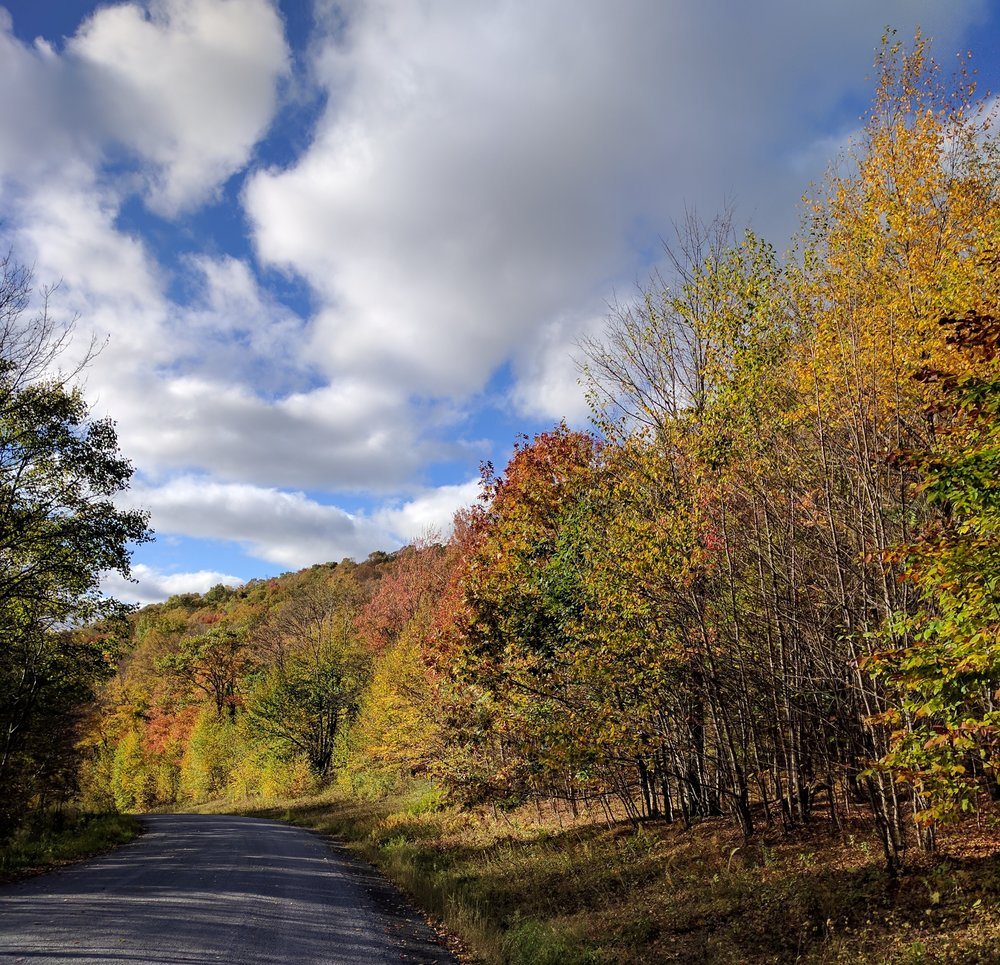 Just driving around the Catskills is fun this time of year as the tree colors change