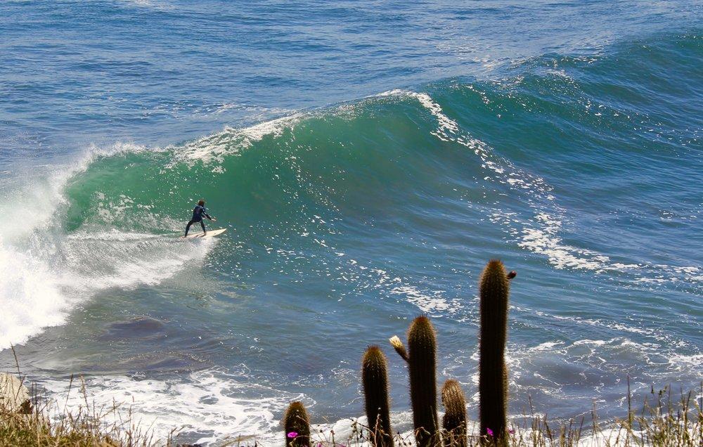 Surfer at Punta de Lobos