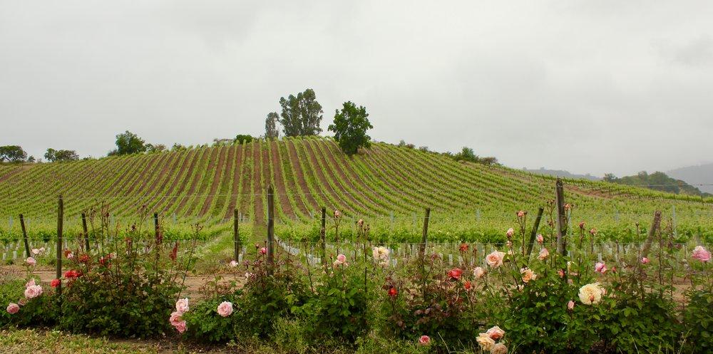 1. Villard Fine Wines -