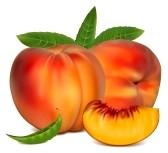 peach+clip+art.jpg
