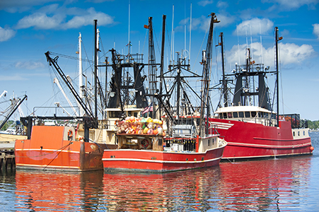 Commercial Fishing & Marine