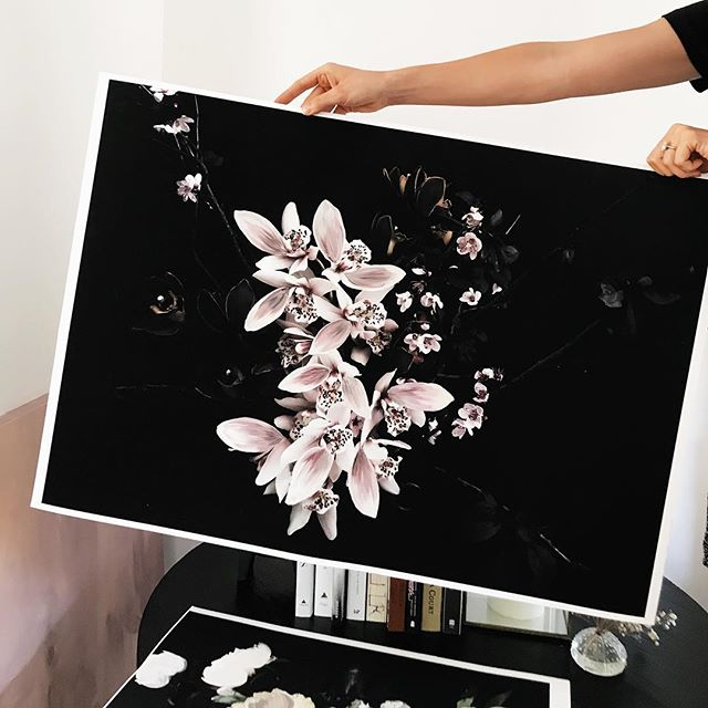 Blush Orchid, printed on heavy fine art cotton rag and then lovely painted to feature individual brush strokes over the image.