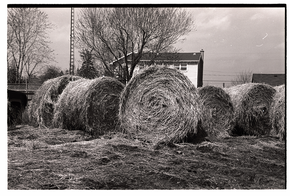 Haystacks. Kodak T Max 400. Notice the imperfection on the image - dust and scratches on the negative - another issue with film photography.